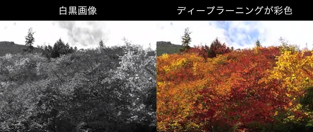 白黒画像をカラー化するAI