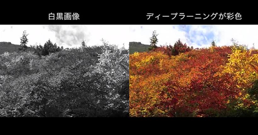 放送品質 白黒画像カラー化 ディープラーニング